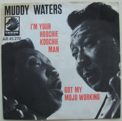 MUDDY WATERS []
